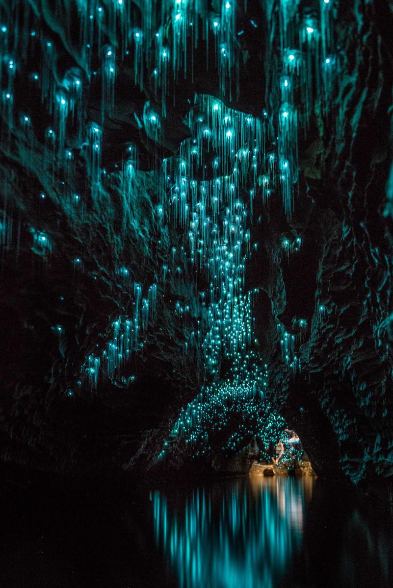 """新西兰唯美""""萤火虫洞"""" 璀璨如夜空 - 双梅 - 张静华"""