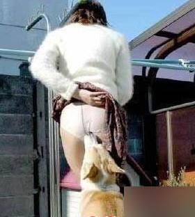 动物盘点:流氓动物调戏美女